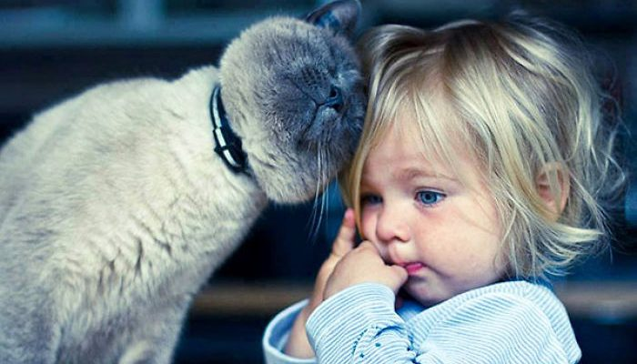 Should children grow up with pets?
